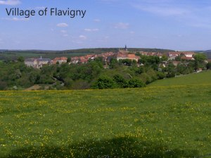 Flavigny-from-afar