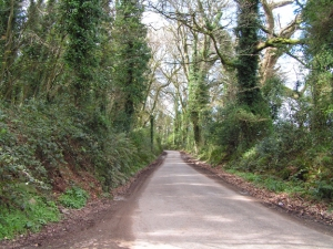 our-Irish-road-home