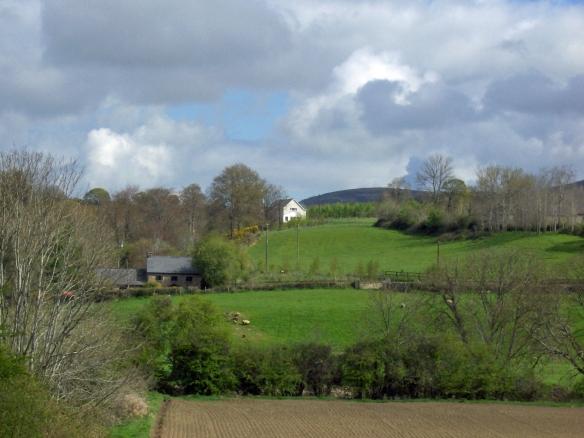 Ireland-farm