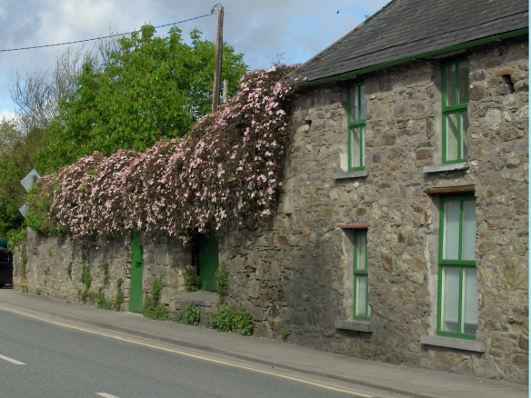 Ireland-house-with-flowers