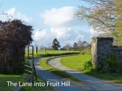 Fruit Hill